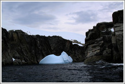 Blue iceberg against the backdrop of one of the Melchior Islands.