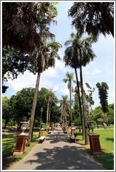 Palm-lined path, Parque Lezama, San Telmo District.