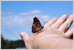 Butterfly on my hand, path to Garganta del Diablo.