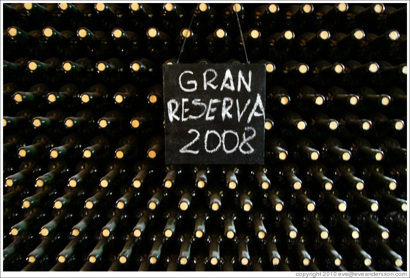 "Bottles labeled ""Gan Reserva 2008"", Roberto Bonfanti, Luj?de Cujo."