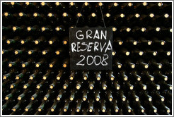 "Bottles labeled ""Gan Reserva 2008"", Roberto Bonfanti, Luj�n de Cujo."