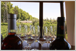 Bottles and glasses with a view over the vineyard, Roberto Bonfanti, Luj�n de Cujo.