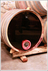 Barrel with transparent face, showing the opacity of the wine, Domaine Jean Bousquet, Valle de Uco.