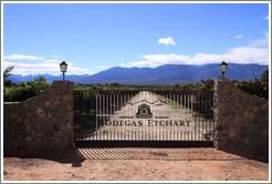 Gate. Bodegas Etchart.