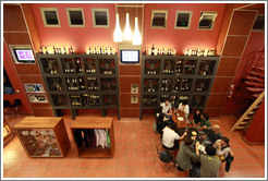 Wine bar. Museo de la Vid y el Vino (Museum of Vine and Wine).