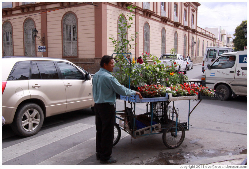 Flower vendor at the corner of Calle Espa?nd Calle Pueyrred