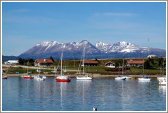 Sailboats houses, Bah�a de Ushuaia.