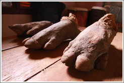 Rhinoceros feet.