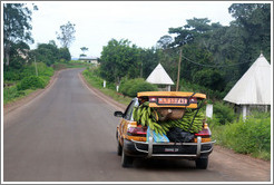 Car loaded with bananas on Route N5.