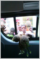 Vendors proffering pineapples on Route N5.