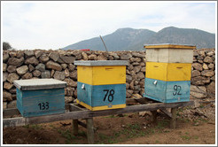 Boxes that bees live in.  Emiliana Vineyards.