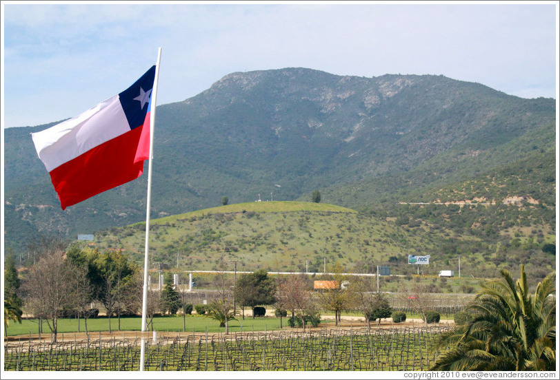 Vineyard, mountains and a Chilean flag.  Veramonte Winery.