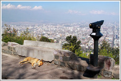 Homeless dog, sleeping at a viewpoint at  the top of Cerro San Crist�bal.