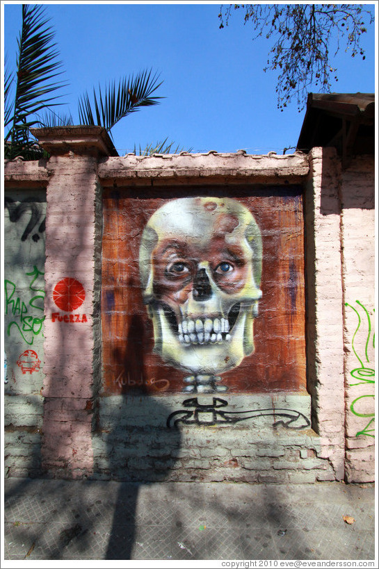 Graffiti: skull with eyes.  Santa Filomena near Ernesto Pinto Lagarrigue, Bellavista neighborhood.