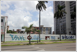"Words painted on a wall on Avenida de la Independencia: ""Viva Cuba""; ""50 de vanguardia""; ""vamos x más""; ""Revolución""."