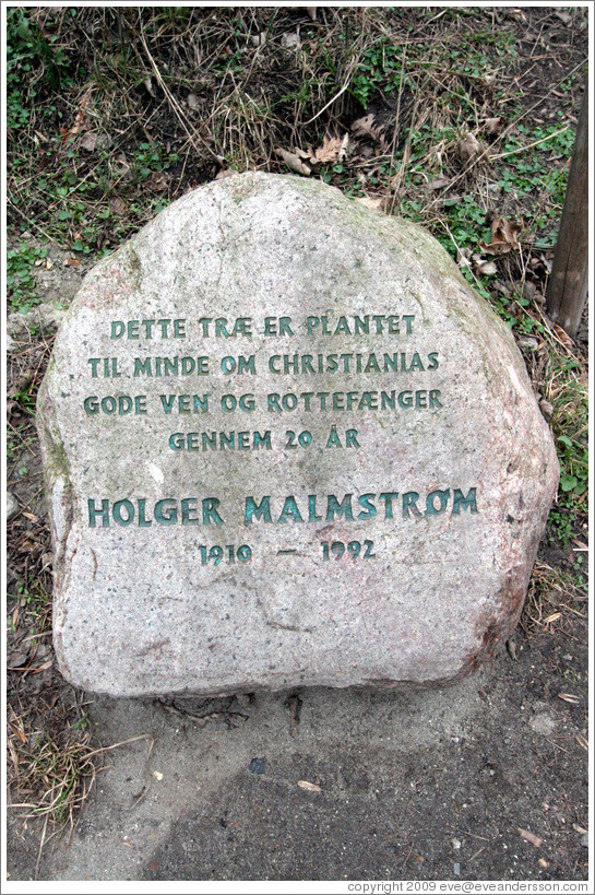 "Rock inscribed with ""Dette tr?r plantet til minde om Christianias gode ven og rottef?er gennem 20 ? (""This tree planted in memory of Christiania's good friend and pied piper through 20 years"")."