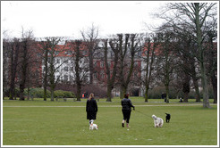 Ladies with dogs.  Kongens Have (King's Gardens).  City centre.