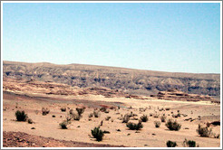 Sinai Desert (pink, with shrubs).