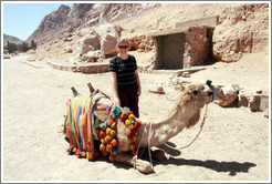 Eve and camel near St. Catherine's Monastery.