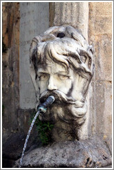 Face containing a water spout.  Fountain in the Place de l'H? de Ville (city hall plaza).