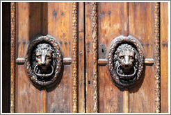 Lions adorning the doors of the H? de Ville (city hall).