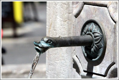 Fountain spout.  Place des Augustins.  Old town.
