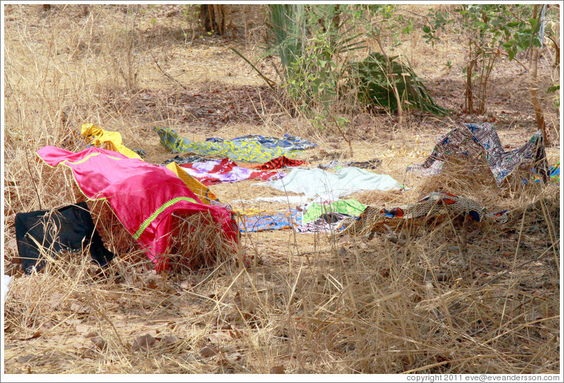 Clothes left on trees and grass to dry by local villagers.