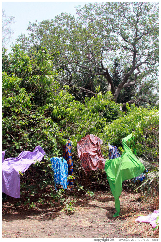 Clothes left on trees to dry by local villagers.