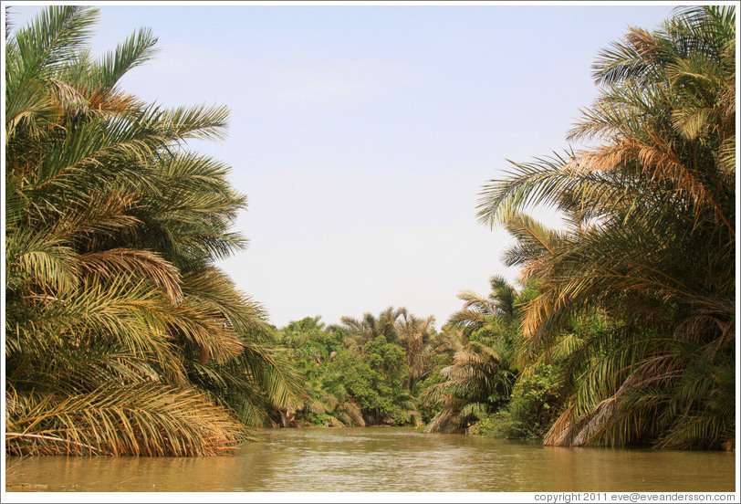 River Gambia.