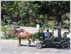 Antigua, Guatemala.  Horse and Carriage in front of Parque Central.