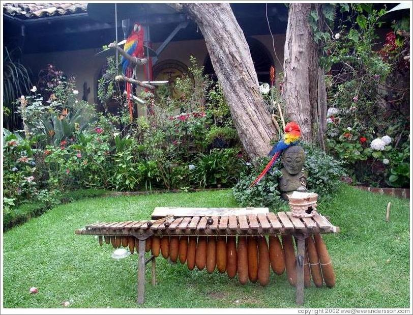 Parrots and a marimba at the Mayan Inn.