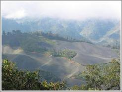 View of farmland from the Biotopo del Quetzal.