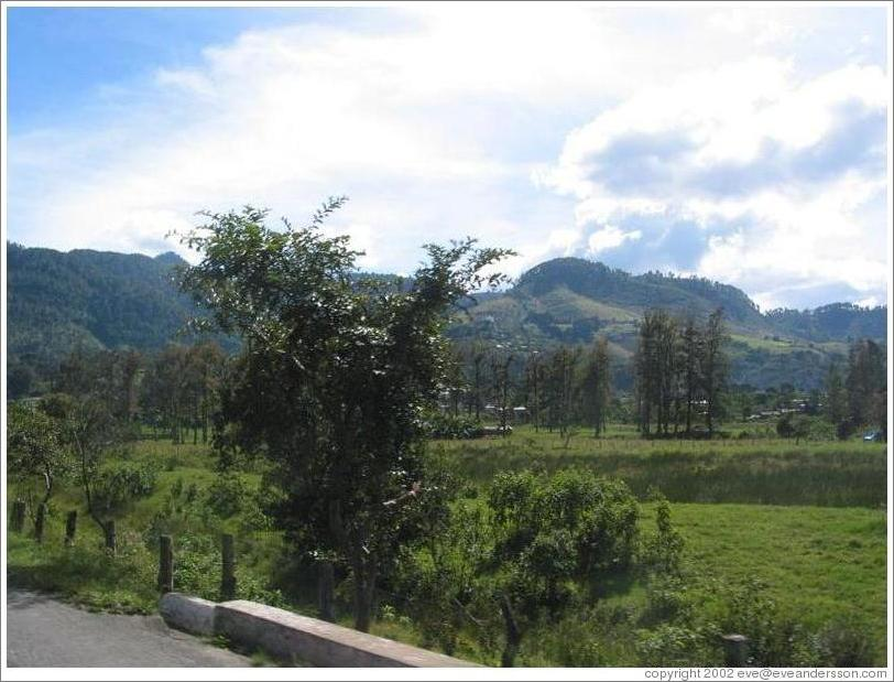 Farmland in the Coban area.