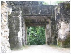 Tikal.  Doorway within Grupo G.