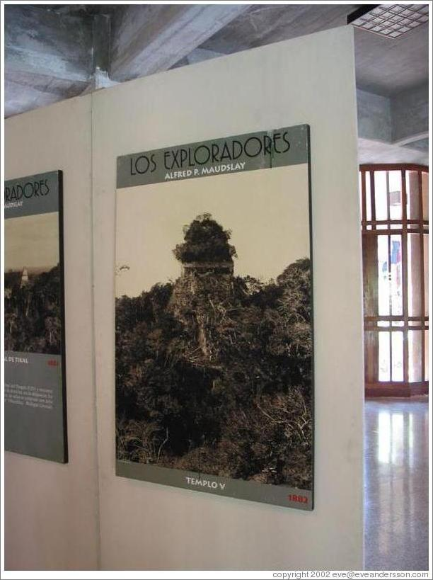 Tikal.  Picture of Templo V before restoration began.  Museum at the Visitor's Center.