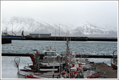 Boats in Reykjavik's harbor with snow-covered mountains in the distance.