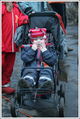 Reykjavik protest.  Child with a recorder (wind instrument).