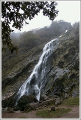 Powerscourt Waterfall -- the highest waterfall in Ireland.