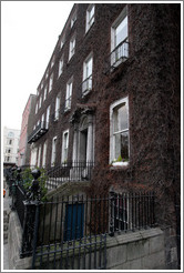 Vine-covered building.  St. Stephens Green North.
