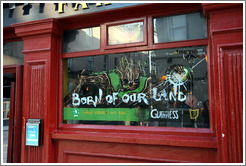 Guinness, born of our land.  Temple Bar.