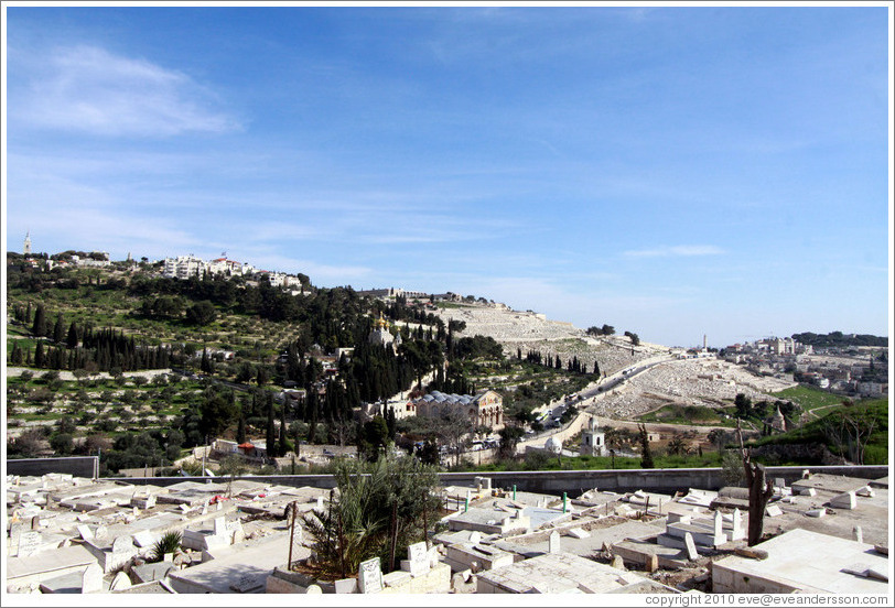 Mount of Olives, viewed from the Yeusefiya cemetery, Jerusalem.