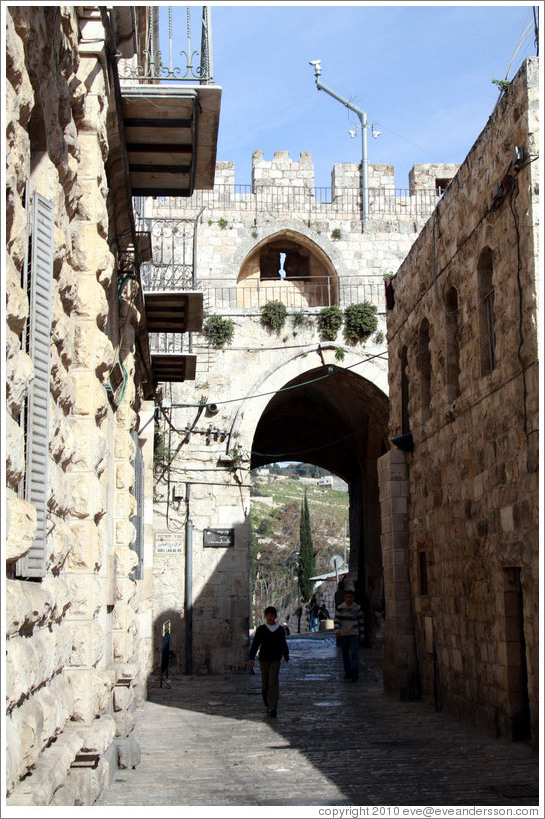 The Lions' Gate, Muslim Quarter, Old City of Jerusalem.