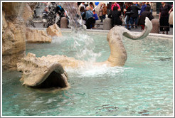 Sea monster, Fontana dei Quattro Fiumi (Fountain of the Four Rivers), Piazza Navona.