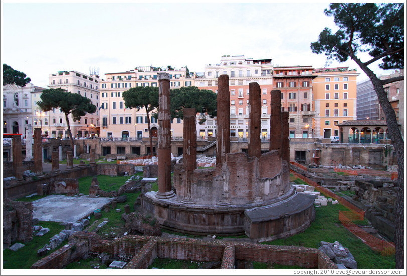 Ruins of Temple B, Largo di Torre Argentina.