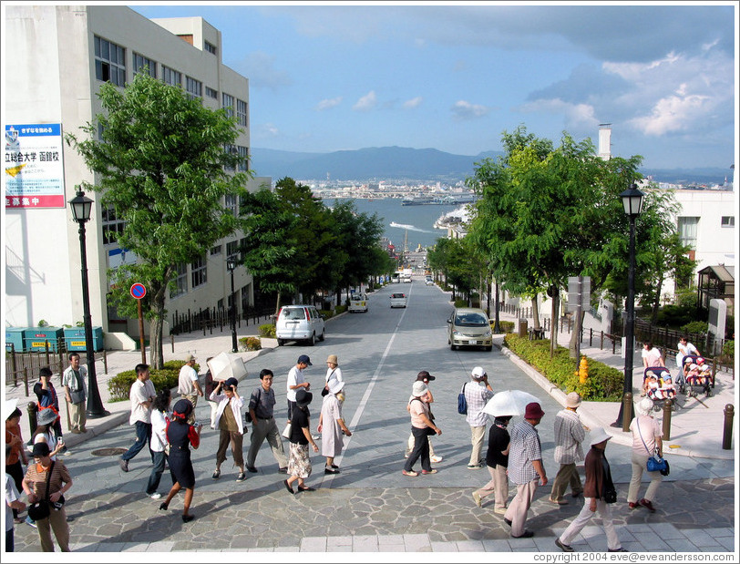 Tourists on street overlooking bay.