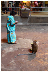Woman and monkey, Batu Caves.