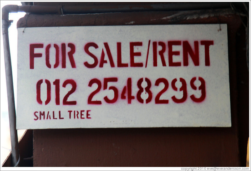 For sale/rent, small tree.  Jalan Tun HS Lee.