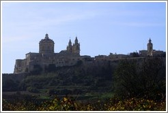 Mdina, the old capital of Malta.