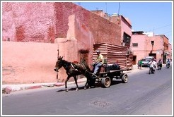 Man with a horse on a street in the Medina.
