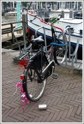 Just Married bicycle.